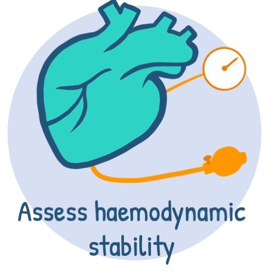 Assess haemodynamic stability
